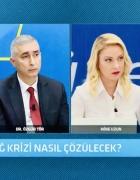 Yeni medeniyet vizyonu ; Doğu Akdeniz, Azerbaycan Karadağ, Mavi Vatan ,Afrin ve diğer dost coğrafyalarından bağımsız düşünülemez.Ön alıcı hamlelerin devamı hukuk ve ekonomi reformlarıdır..